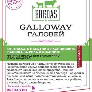 буркан Galloway